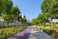 Dubai Hills Park, jogging path, Dubai