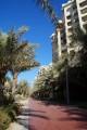 Shoreline Apartments, Running Track In Al Ittihad Park, Dubai